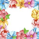 水彩开花框架 向量例证