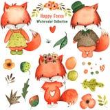 水彩手拉的叶子、花和狐狸背景数字纸和织品 库存例证