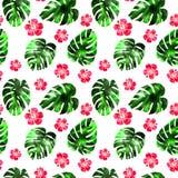 水彩手拉的热带无缝的样式 库存例证