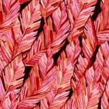 水彩无缝的样式热带香蕉叶子 纺织品fabri的夏天居住的珊瑚印刷品 向量例证