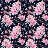 水彩无缝的样式用开花的樱桃,牡丹, 向量例证