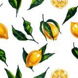 水彩无缝的样式用柠檬和叶子 也corel凹道例证向量 库存例证