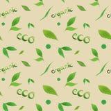 水彩无缝的样式简单的绿色叶子eco,有机概念,在上写字在米黄背景 皇族释放例证