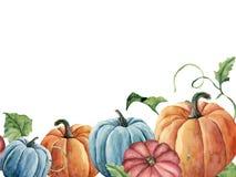 水彩明亮的南瓜和叶子卡片 与在白色背景隔绝的分支的手画秋天南瓜装饰品 免版税库存图片