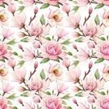 水彩木兰花卉传染媒介样式 免版税库存图片