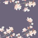 水彩木兰花和分支 免版税图库摄影