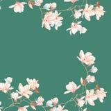 水彩木兰花和分支 库存照片