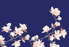 水彩木兰花和分支 库存图片