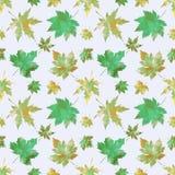 水彩枫叶的样式织品的 向量例证