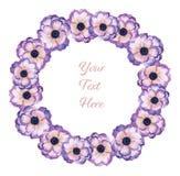 水彩树胶水彩画颜料花卉标签银莲花属和叶子手拉的fl 向量例证