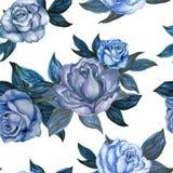 水彩树胶水彩画颜料葡萄酒玫瑰无缝的背景样式 向量例证