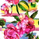 水彩桃红色牡丹花 花卉植物的花 无缝的背景模式 皇族释放例证
