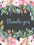 水彩桃红色领域康乃馨,蓝色和绿色分支拟订模板,手拉在黑暗的背景 免版税库存图片