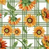 水彩橙色向日葵花 花卉植物的花 无缝的背景模式 库存例证