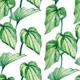 水彩热带叶子无缝的样式,五颜六色的夏天印刷品 免版税库存图片