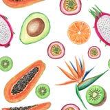 水彩热带水果无缝的样式 手画例证:鲕梨、番木瓜、桔子、猕猴桃、maracuja和鹤望兰 皇族释放例证