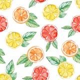 水彩热带水果样式 柠檬,桔子,织物的葡萄柚印刷品,墙纸,海报背景,社会我 向量例证