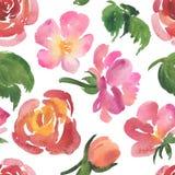 水彩玫瑰的无缝的样式,绿色离开 免版税库存图片