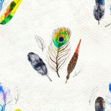 水彩用羽毛装饰无缝的样式 手画纹理 库存例证