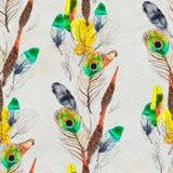 水彩用羽毛装饰无缝的样式 手画纹理 向量例证