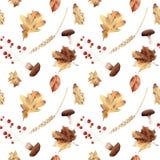 水彩秋天无缝的样式手画叶子thanksgiv 免版税图库摄影