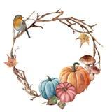 水彩秋天树枝、鸟和南瓜缠绕 与知更鸟、蘑菇和叶子的手画花圈在白色 免版税图库摄影
