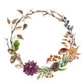 水彩秋天树枝和花花圈 与橡子、蘑菇、锥体、莓果和叶子的手画花圈 免版税图库摄影