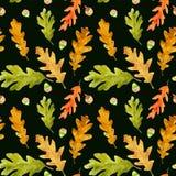 水彩秋天橡木在黑色留下无缝的样式 免版税库存图片