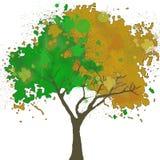 水彩结构树向量 图库摄影