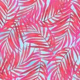 水彩绘在难看的东西织地不很细背景的梯度棕榈叶 库存例证