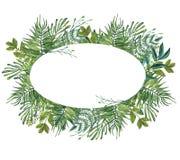 水彩绿色叶子框架 留下手画花圈 库存图片
