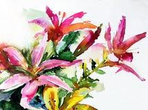 水彩艺术背景五颜六色的自然夏天桃红色花开花百合从事园艺 库存照片