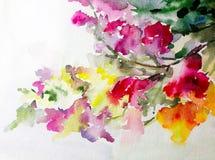 水彩艺术背景五颜六色的自然夏天桃红色黄色红色白花开花分支春天庭院 免版税图库摄影