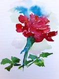 水彩艺术背景五颜六色的花上升了 库存图片