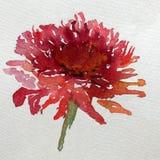 水彩艺术背景五颜六色的花大丽花庭院 免版税图库摄影