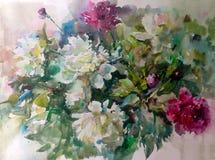水彩艺术背景五颜六色的花牡丹 免版税库存照片
