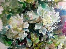 水彩艺术背景五颜六色的花牡丹 库存照片