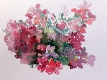 水彩艺术背景五颜六色的花狂放的庭院 免版税库存图片