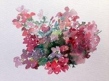 水彩艺术背景五颜六色的花狂放的庭院 库存图片