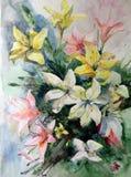 水彩艺术背景五颜六色的花百合 免版税库存图片