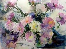 水彩艺术背景五颜六色的花翠菊 图库摄影