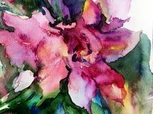 水彩艺术背景五颜六色的花 免版税库存照片