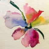水彩艺术背景五颜六色的花 图库摄影