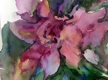 水彩艺术背景五颜六色的花 免版税图库摄影