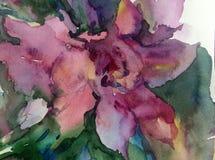 水彩艺术背景五颜六色的花 库存照片