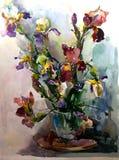 水彩艺术背景五颜六色的虹膜开花花束春天白色蓝色紫色紫罗兰 库存照片