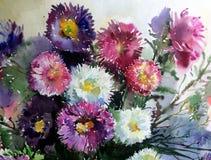 水彩艺术背景精美五颜六色的自然开花翠菊花束新鲜浪漫 免版税库存照片