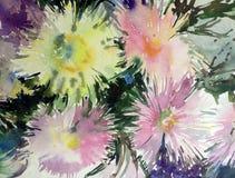 水彩艺术背景精美五颜六色的自然开花翠菊花束新鲜浪漫 图库摄影