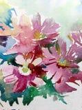 水彩艺术背景花野花桃红色紫罗兰色愉快五颜六色织地不很细 免版税图库摄影