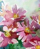 水彩艺术背景花野花桃红色紫罗兰色愉快五颜六色织地不很细 库存图片